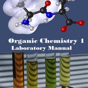 organic chemistry 2 lab manual